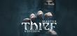 Купить Thief: Master Thief Edition