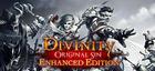 Купить Divinity: Original Sin - Enhanced Edition
