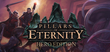 Купить Pillars of Eternity - Hero Edition
