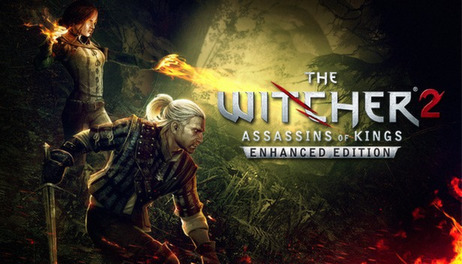 Купить The Witcher 2: Assassins of Kings Enhanced Edition
