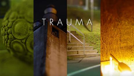 Купить Trauma