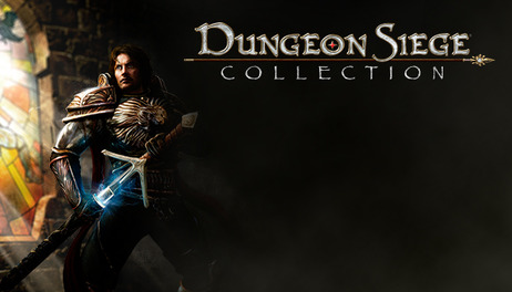 Купить Dungeon Siege Collection