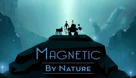 Купить Magnetic By Nature
