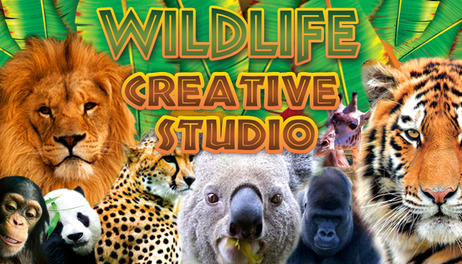 Купить Wildlife Creative Studio