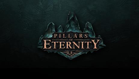 Купить Pillars of Eternity - Hero Edition