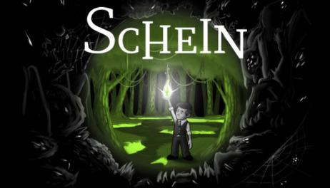 Купить Schein