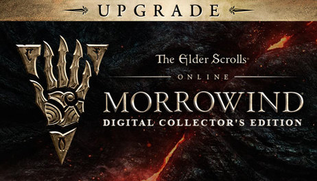 Купить The Elder Scrolls Online - Morrowind - Digital Collector's Edition Upgrade