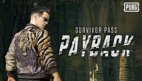 Купить PLAYERUNKNOWN'S BATTLEGROUNDS Survivor Pass: Payback