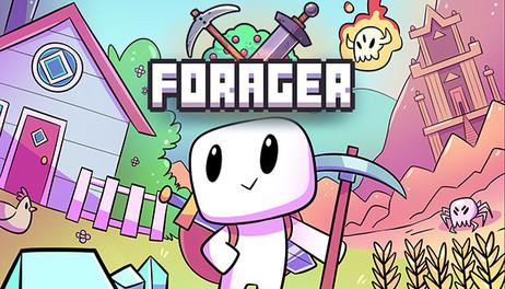 Купить Forager