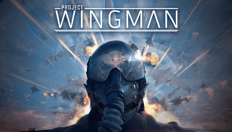 Купить Project Wingman