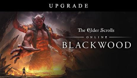 Купить The Elder Scrolls Online - Blackwood Upgrade