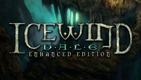Купить Icewind Dale: Enhanced Edition