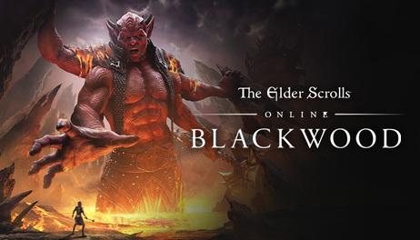 Купить The Elder Scrolls Online - Blackwood