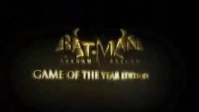 Купить Batman: Arkham Asylum Game of the Year Edition