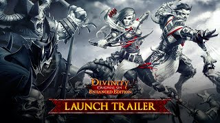 Купить Divinity: Original Sin - Enhanced Edition