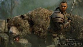 Купить The Elder Scrolls Online: Tamriel Unlimited + Morrowind