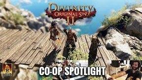 Купить Divinity: Original Sin 2