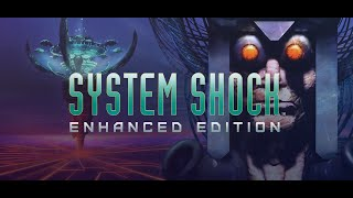 Купить System Shock: Enhanced Edition