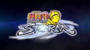Купить NARUTO: Ultimate Ninja STORM HD