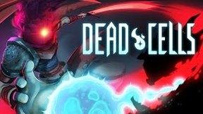 Купить Dead Cells