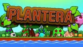 Купить Plantera