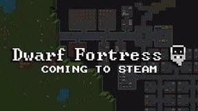 Купить Dwarf Fortress