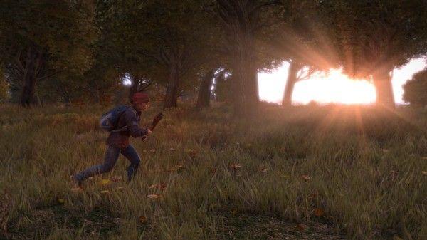 Скриншоты игры DayZ Standalone