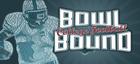 Купить Bowl Bound College Football
