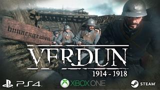 Купить Verdun